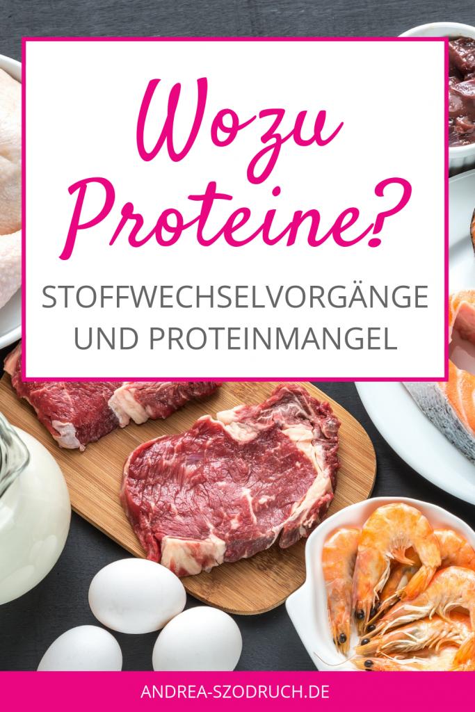 Proteine und Aminosaeuren_wozu brauchen wir sie
