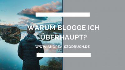 blogmomentum