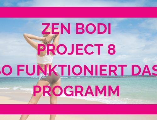 Zen Bodi Project 8 – So funktioniert das Programm